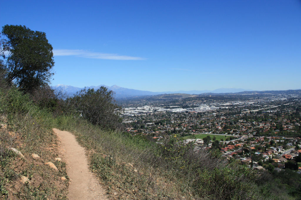 An overlook of Hacienda Heights from the Puente and Chino Hills trails.