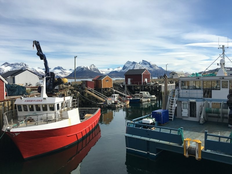 Norway, the country where modern fish farming was invented. Fish farms are becoming more popular as global demand for fish grows.