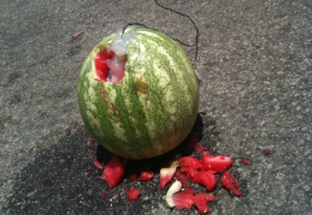 Watermelon that is wired for detonation at the illegal fireworks demonstration, July 1, 2010.
