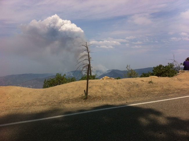 El Portal Fire smoke plume on July 30, 2014.