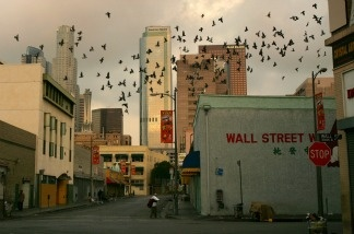 Birds fly overhead in the Wall Street area where the homeless have woken up before dawn to dismantle their beds and encampments before businesses open in the downtown Skid Row area of Los Angeles