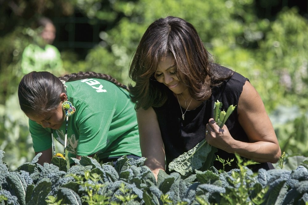 Mrs. Obama harvests kale with students in the White House Kitchen Garden, June 6, 2016.