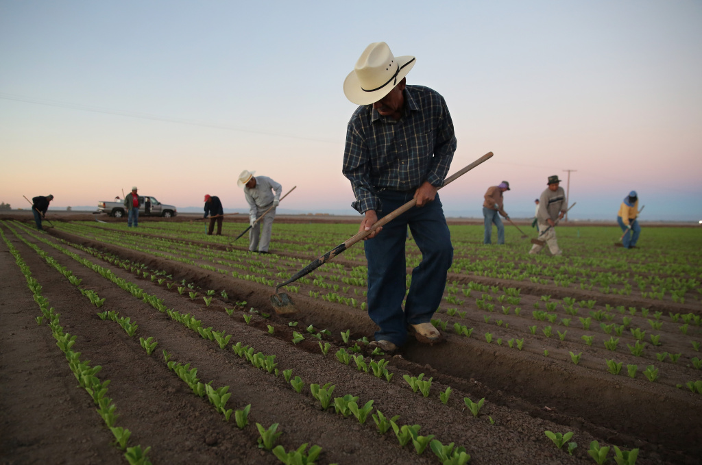 Agricultural workers in California. Governor Jerry Brown could approve the first bill in the U.S. that would approve overtime pay for farm workers who've worked more than 40 hours a week or eight hour days.