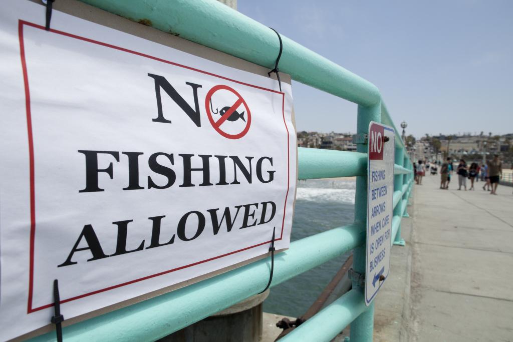 After a juvenile great white shark bit a swimmer, fishing is not allowed on the Manhattan Beach Pier until Sept. 7.