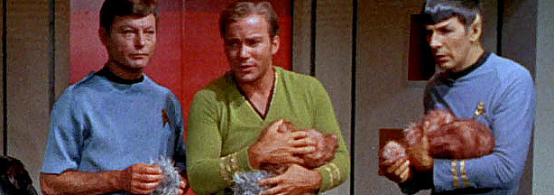 Tribbles, tribbles, everywhere!  A shot from the original 1967