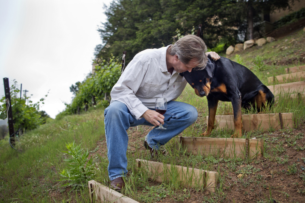 Donald Schmitz hugs his dog, Duke, while holding a glass of cabernet made from his grapes. Schmitz produced 2001, 2005 and 2012 labels.