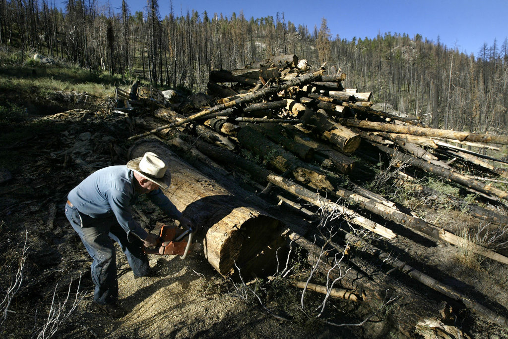 FILE PHOTO: California regulators have expanded water reporting requirements for logging companies in response to the state's ongoing drought.