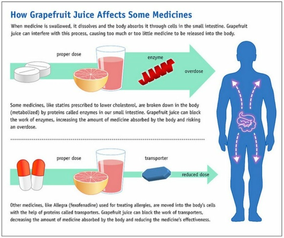 grapefruit medicine medication drugs drug interaction