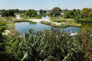 The San Gabriel River