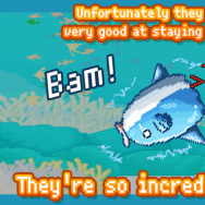 "A screenshot from ""Survive! Mola mola,"" the video game that gets kids thinking about ocean ecosystems."