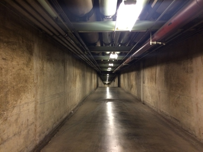 The pedestrian tunnel underneath Downtown Los Angeles links up the Hall of Records to other civic buildings in the area.