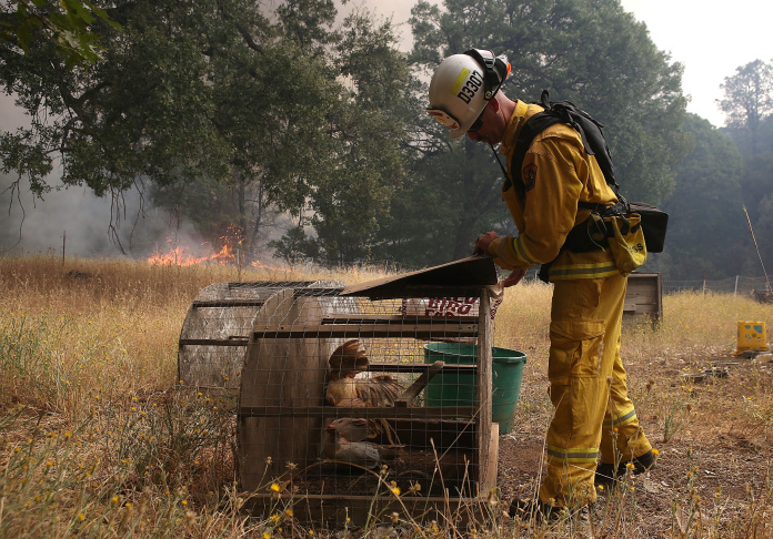 Resident watch a large plume of smoke from the Rocky Fire on August 3, 2015 near Clearlake Oakes, California.