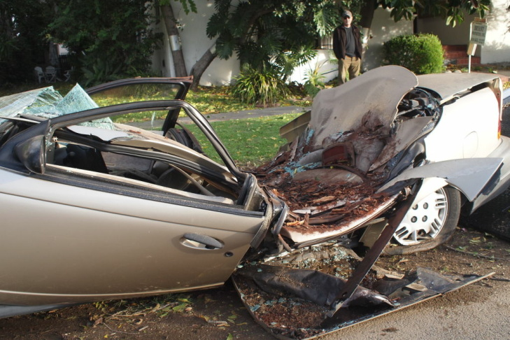A car in South Pasadena, crushed by a falling tree