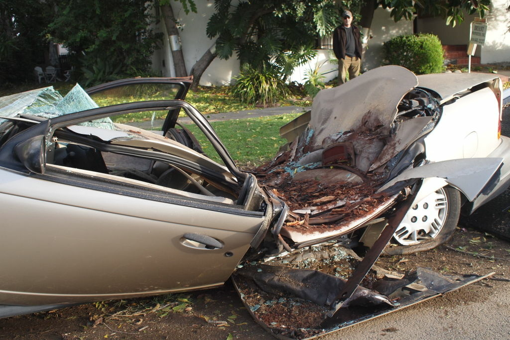 A car in South Pasadena, crushed by a falling tree from strong Santa Ana winds.
