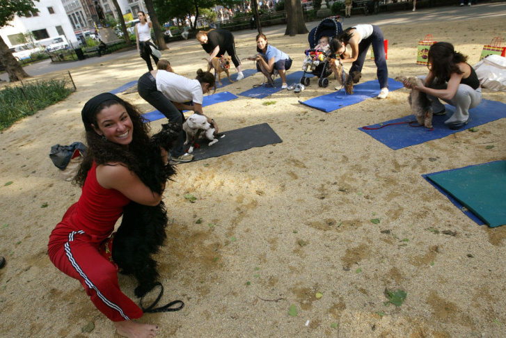 Yoga Goes To The Dogs In New York