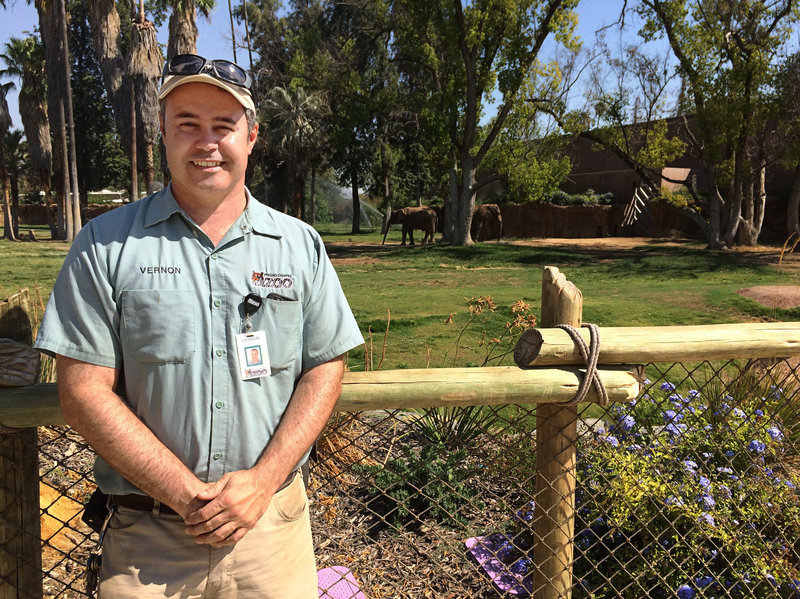 Vernon Presley is the lead elephant curator at the Fresno zoo. Software that gives elephant caretakers a wealth of data on the elephants' health and activity from day to day has helped zoo workers create more interesting social environments for the animals, Presley says.