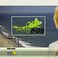 FrogAds Pamela Anderson