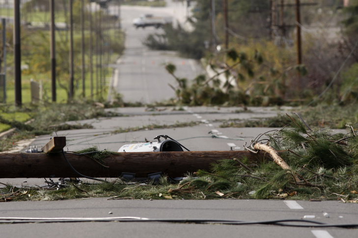 A boy whose school was closed climbs fallen trees on Green Street on December 1, 2011 in Pasadena, California.
