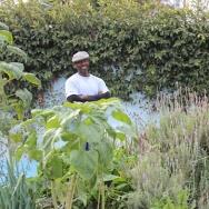 Ron Finley's garden in Crenshaw