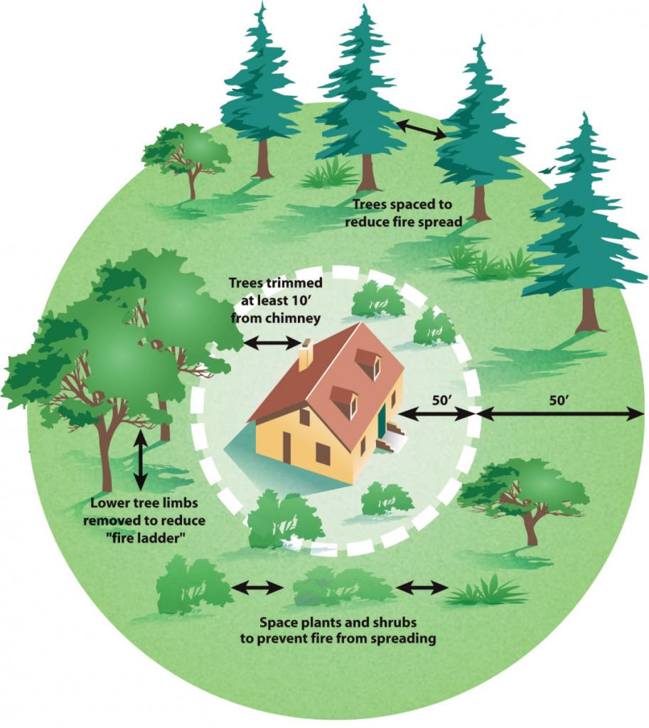 A graphic showing how to maintain defensible space around a home to reduce the threat of wildfire.