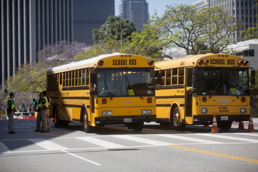 File: School buses.