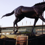 Breeder's Cup - 1