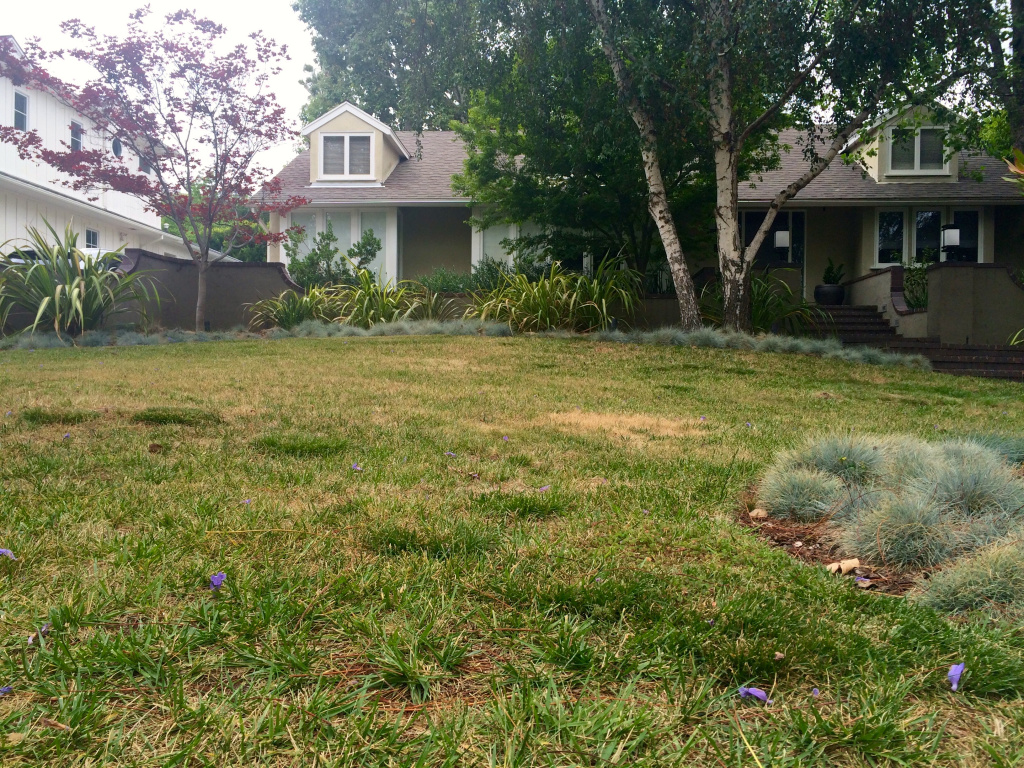 Lawns like the one at this Sherman Oaks home are thirsty, and so are rebate-seeking homeowners who are boosting demand for Metropolitan's turf removal program. The regional water wholesaler is going to vote on rules that boost available funding significantly while retooling how rebates are paid out.
