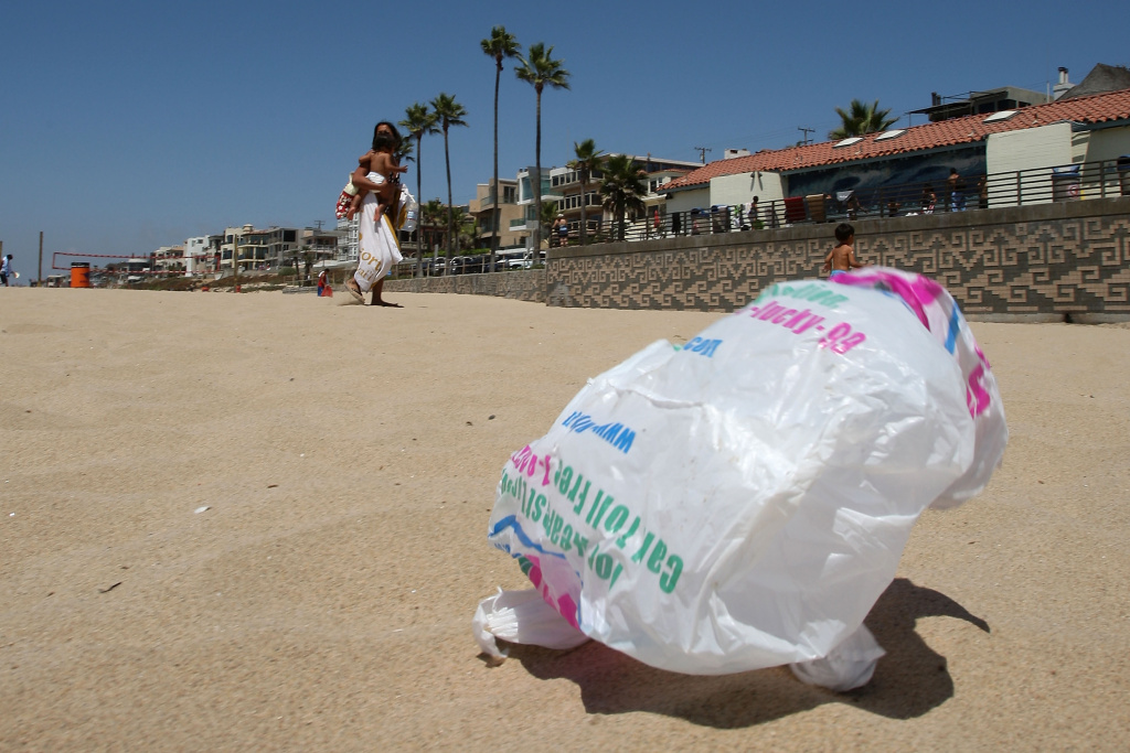 The wind blows a plastic bag around the beach near the Manhattan Beach Pier in the Los Angeles area city of Manhattan Beach, California, in this August 21, 2008 file photo.