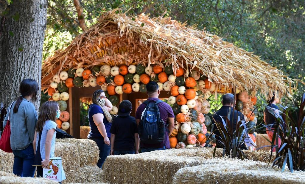 People visit a display of Halloween pumpkins at Descanso Gardens in La Canada Flintride, California.