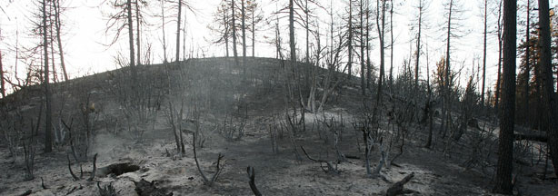 A charred landscape is left in the wake of the 250-square-mile Station Fire as firefighters work to complete the final defensible fireline to contain the massive fire in the San Gabriel Mountains on September 16, 2009 in the Angeles National Forest, northeast of Los Angeles.