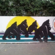 Gorillas Venice