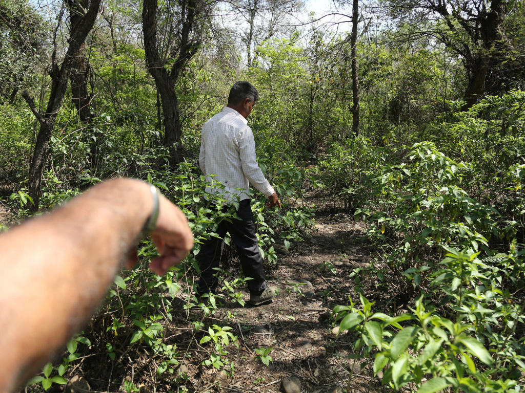 Men walk near the site where the body of an 8-year-old girl, who was raped and murdered, was found in January.