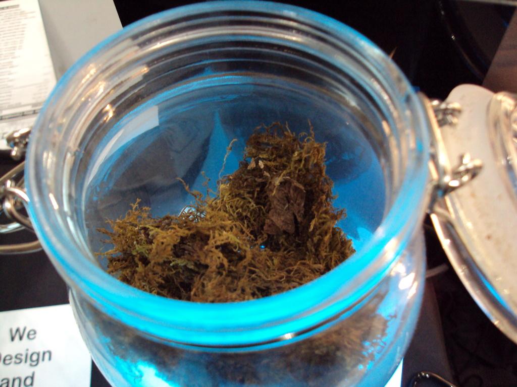 Medical marijuana at HempCon.
