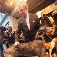 Westminster Kennel Club Previews Some Of The Breeds Competing In Annual Show