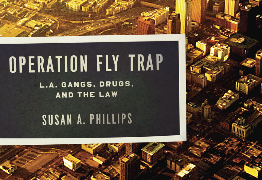 Cover of Susan A. Phillips's book