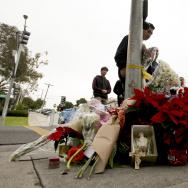 Pedestrians Hit