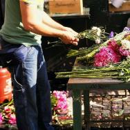 A florist assembles bouquets at the Campo de' Fiori in Rome, Italy.