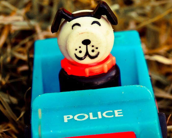 Not an actual police dog.