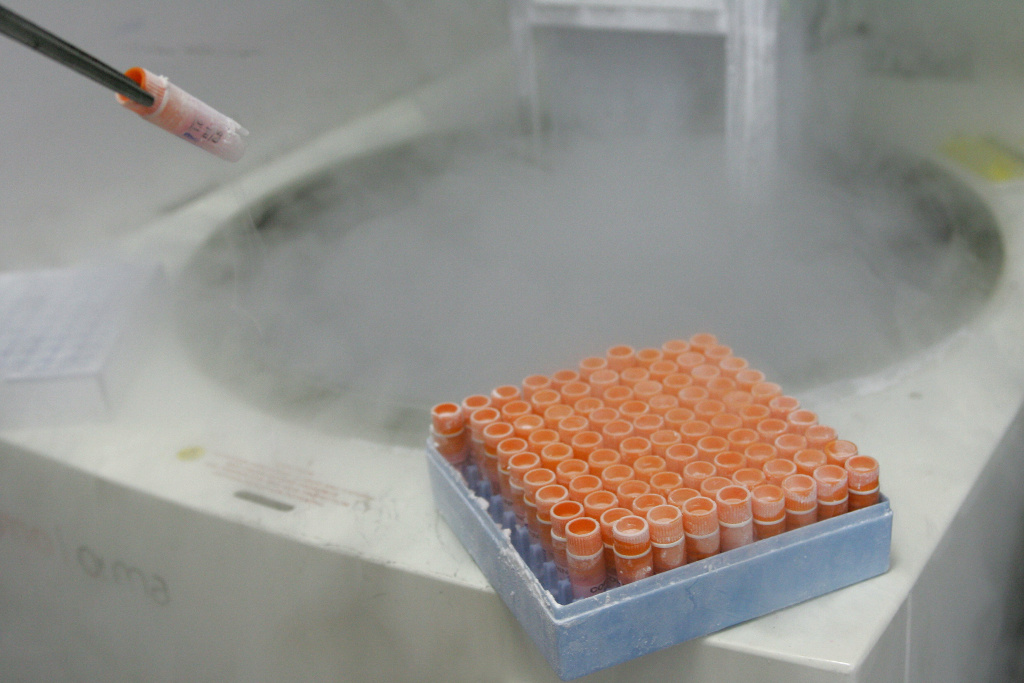 A scientific researcher handles frozen embryonic stem cells in a laboratory, at the Univestiry of Sao Paulo's human genome research center, in Sao Paulo, Brazil, on March 4, 2008.