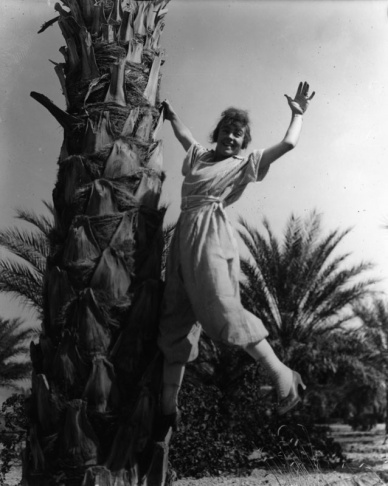 An undated photo of a woman frolicking with a date palm, probably in the Coachella Valley.