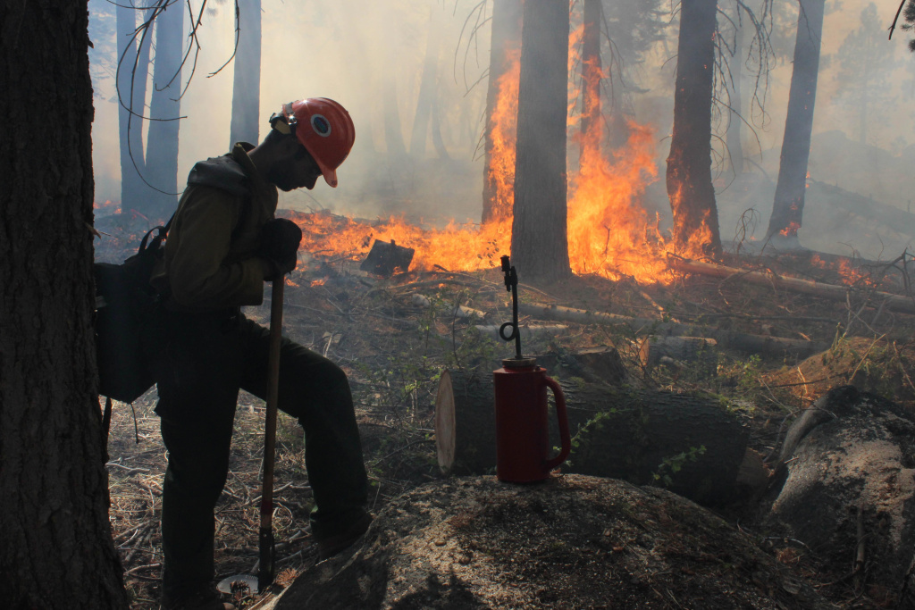 In this photo provided by the U.S. Forest Service, a Hotshot fire crew member rests near a controlled burn operation at Horseshoe Meadows, as crews continue to fight the Rim Fire near Yosemite National Park in California Wednesday, Sept. 4, 2013.