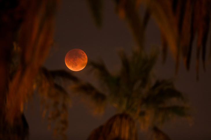 An eclipsed supermoon is shown on September 27, 2015 in Los Angeles, California.